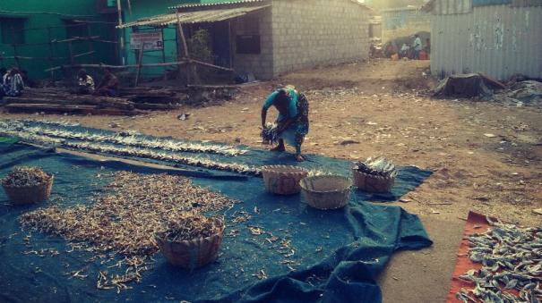 real-life-struggles-of-kasimedu-fisherwomen