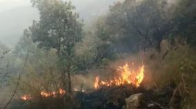 theni-forest-fire-wildlife-under-danger
