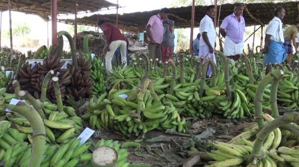 vegetable-trade-hits-in-mettupalayan-due-to-corona