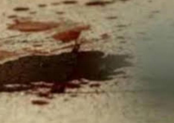 murder-in-krishnagiri