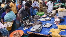 ukkadam-fish-market-closed