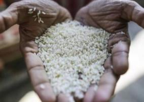 rice-price-hiked-in-puduchery