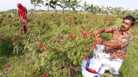 flower-farmers-worst-affected