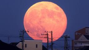 pink-full-moon