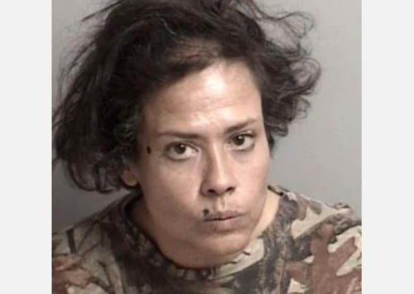 coronavirus-california-woman-arrested-for-licking-1-800-worth-of-groceries