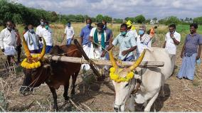 chitirai-festival-in-ettayapuram