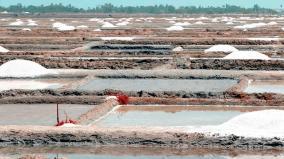 salt-pan-workers-affected-in-villupuram