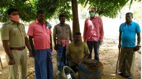 rajapalayam-130-litre-illicit-liquor-destructed
