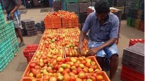 tomato-price-goes-down-to-rs-5-per-kilo-in-ottanchatiram-market