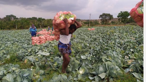 farmer-struggles-to-sell-his-vegetables