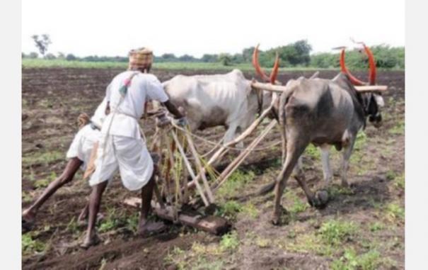 farmer spend 50 lakh for poor