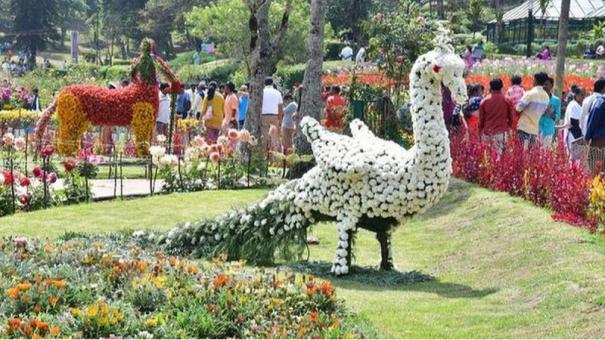 kodaikanal-flower-show-to-be-given-up-due-to-corona-scare