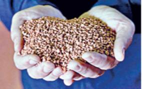 urea-potash-fertilizer