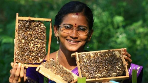 honey-cultivation-and-its-importance-explained