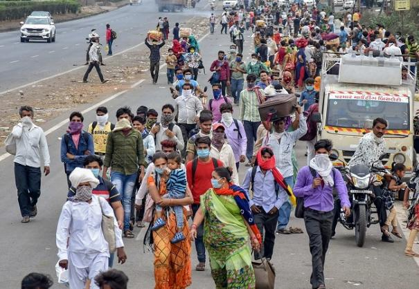 herd-immunity-as-covid-19-strategy-risky-countries-must-make-timely-interventions-csir-dg