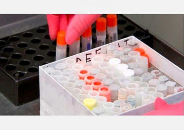 no-evidence-of-coronavirus-changing-its-severity-experts
