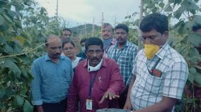 insects-control-in-hosur