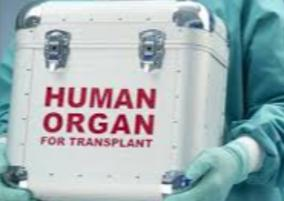 tn-government-releases-guidelines-for-hospitals-performing-transplant-treatments