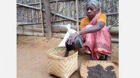 valparai-tribes-in-trouble