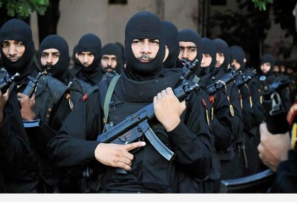 over-55-nsg-personnel-have-tested-covid-19-positive-so-far-combat-commandos-safe