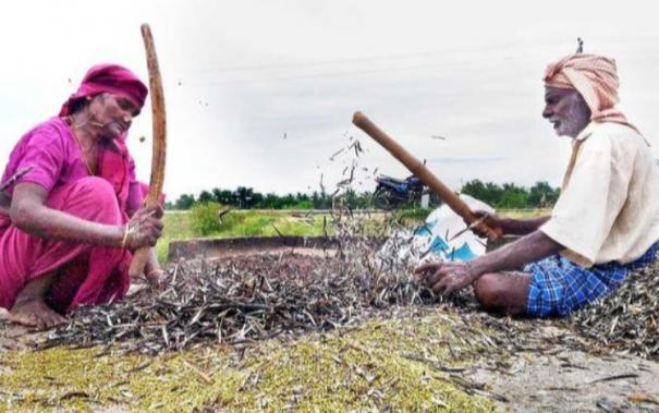 madurai-district-agriculture-department-announcement