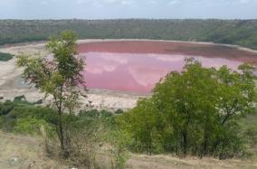 lonar-lake-colour-changes-to-pink-experts-locals-surprised