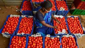 price-of-tomato-increases