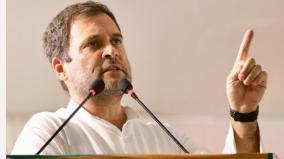 arrogance-more-dangerous-than-ignorance-rahul-quotes-einstein-to-take-swipe-at-govt