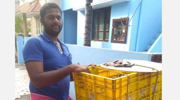 auto-driver-into-fish-sales