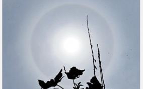 ring-solar-eclipse