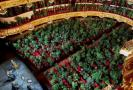 barcelona-opera-house-reopens-with-concert-for-2-292-plants