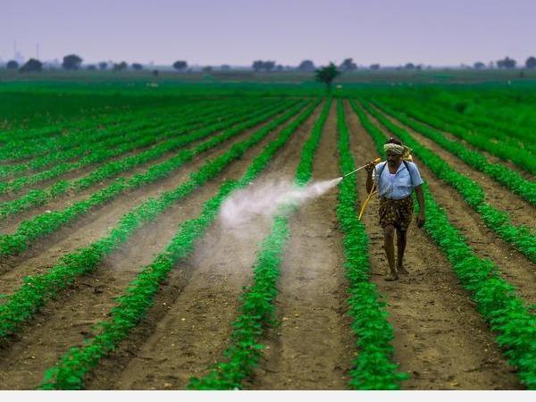 ban-for-pesticides