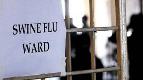 swine-flu-in-china