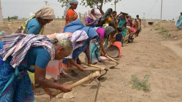 mahatma-gandhi-100-days-work