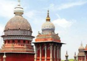 advertisements-on-trees-highcourt-order-to-chennai-corporation