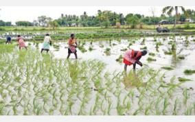 trichy-agricultural-works