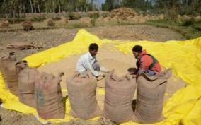 total-19-32-lmt-food-grains-lifted-by-the-states-and-uts-under-pmgkay-2