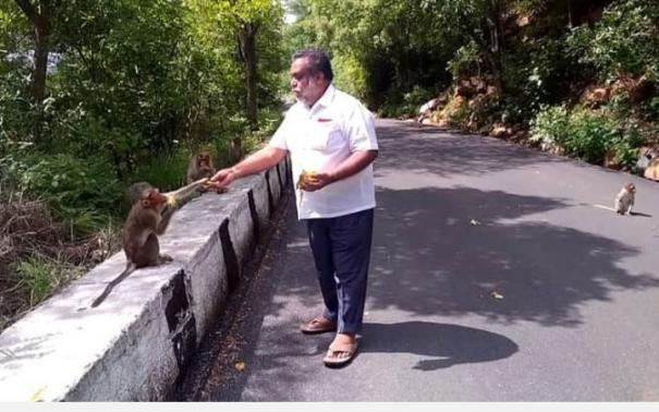 foresters-should-come-forward-to-save-wildlife-social-activists-demand-feeding-of-monkeys-in-yelagiri