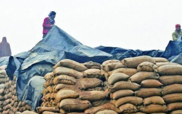 distribution-of-food-grains-under-pmgkay-ii-started-total-33-40-lmt-food-grains-picked-up-by-the-states-uts-till-now
