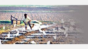 telangana-agriculture