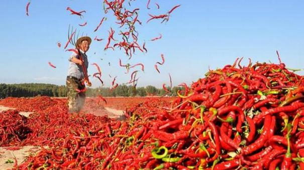 15th-finance-commission-s-hleg-on-agricultural-exports-submits-report