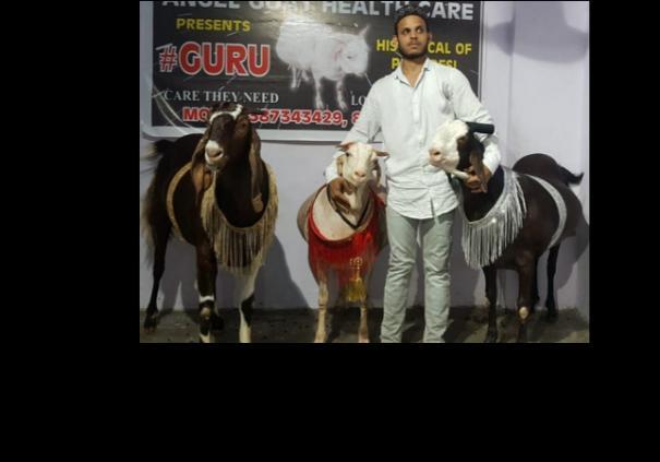 u-p-kanpur-qurbani-goat-sacrifice