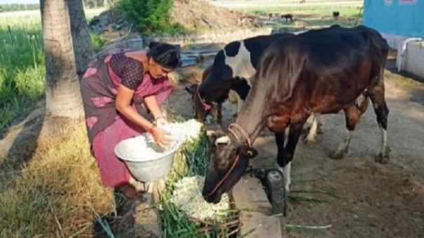 aavin-earns-rs-420-crore-profit-in-corona-curfew-period