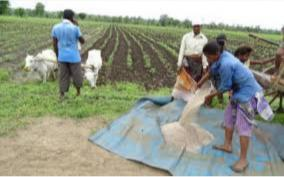 nfl-total-fertilizer-sale-reaches-all-time-high-at-18-79-lakh-mt-in-april-july-20