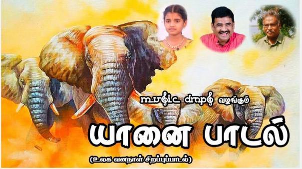 elephant-song