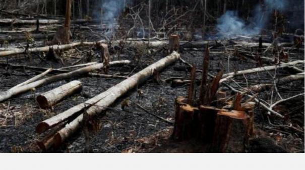 amazon-fires-a-lie-says-brazil-president-jair-bolsonaro