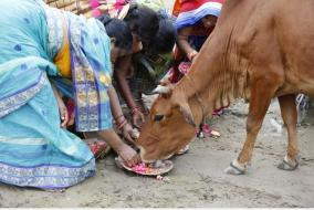 maharashtra-village-does-not-sell-milk-gives-it-to-those-in-need