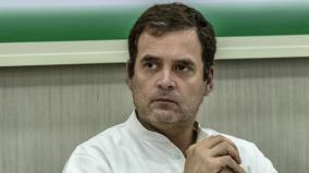 what-rahul-gandhi-should-do