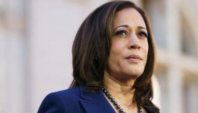 will-kamala-harris-succeeds-in-election