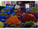 600-fruit-shops-left-unoccupied-high-court-notice-to-the-government-in-the-case-of-coimbatore-traders